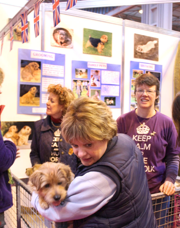 Discover Dogs Crufts 2013