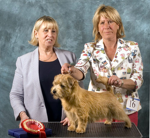 BEST PUPPY:  WATERCROFT DIAMOND DEALER with Ruth Gee