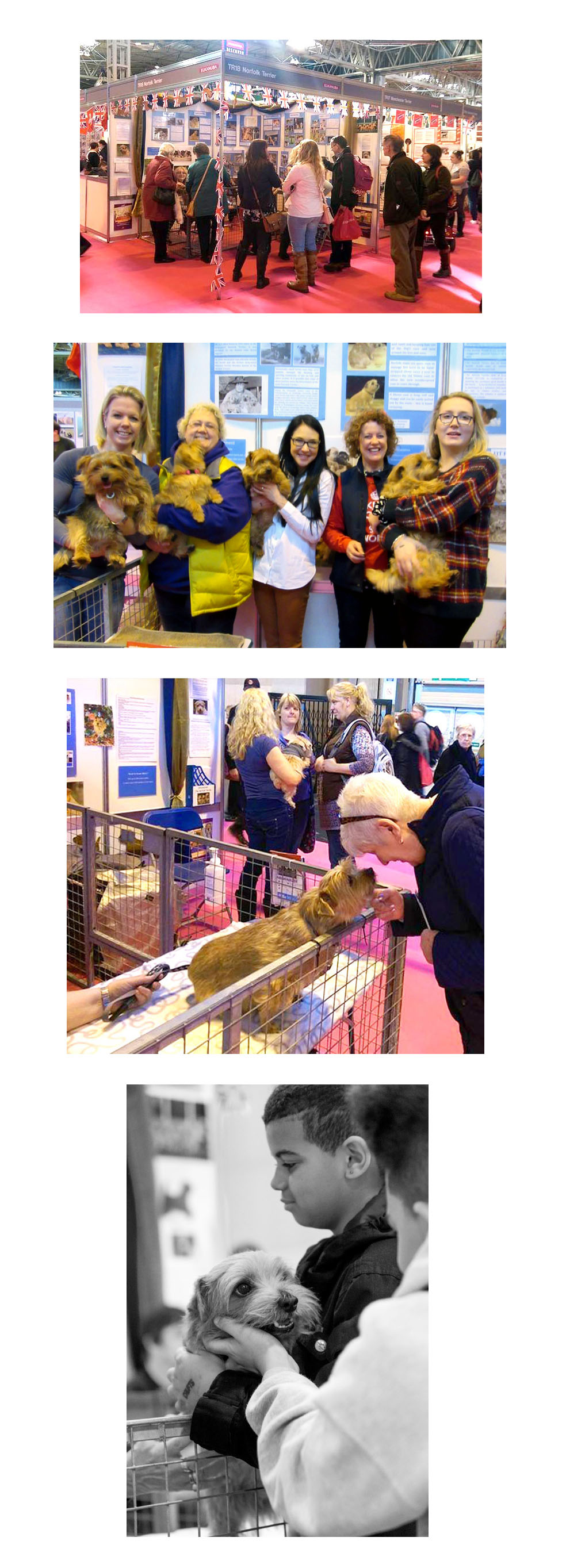 Discover Dogs 2015 Crufts