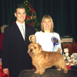 RESERVE BEST IN SHOW & RESERVE BEST DOG:  OFF THE CUFF BY RICHELL