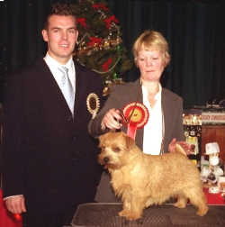 BEST IN SHOW & BEST DOG:  CH KINSRIDGE FREE 'N' EASY
