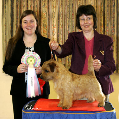 BEST IN SHOW & BEST DOG: ALLRIGHT SMART SIR BYRON (IMP)