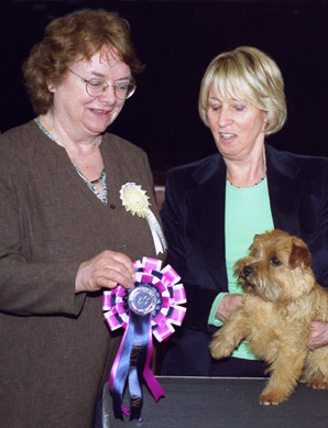 Krisma Jellybean claims her Best In Show rosette