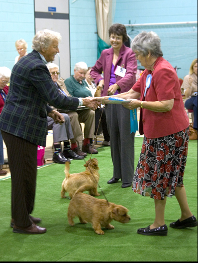 Mrs Atkinson winning Best Puppy in Show with Moortop No Choice