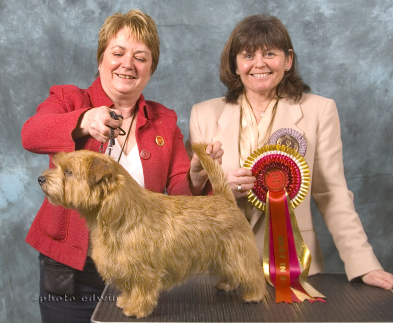 BEST IN SHOW & BEST DOG   BLAKENS XPRESS YOURSELF