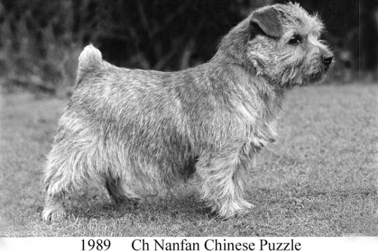 1989 Ch Nanfan Chinese Puzzle