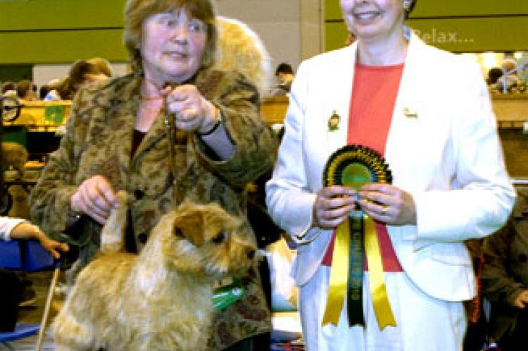 Dog CC - BP and BOB -  Penmire Wild Bramble by Brickin  with judge Mrs C Thompson-Morgan
