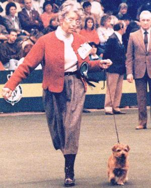 Joy with Ch Nanfan Chinese Puzzle  in the terrier group ring at Crufts 1989
