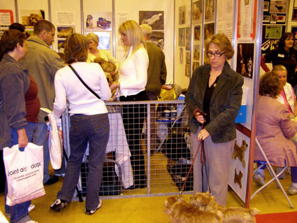 Discover Dogs 2006